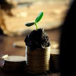 Qu'est-ce que le capital social d'une entreprise ?